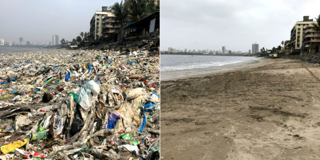 Clean beaches !! Clearing 500 tons of garbage !